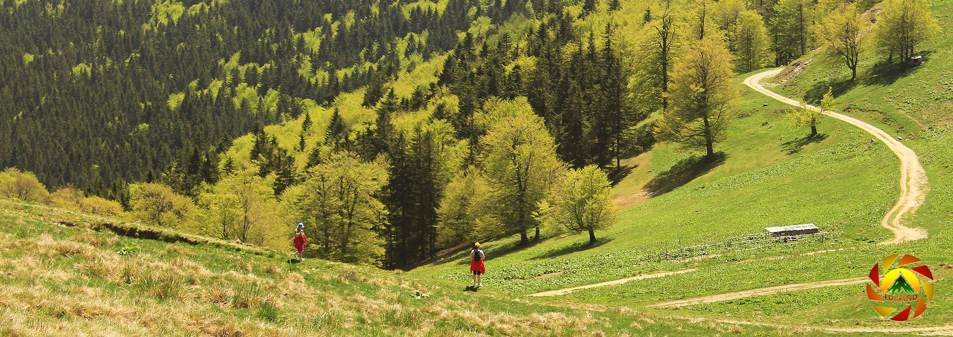 Ciucaș – Pâclele Mici